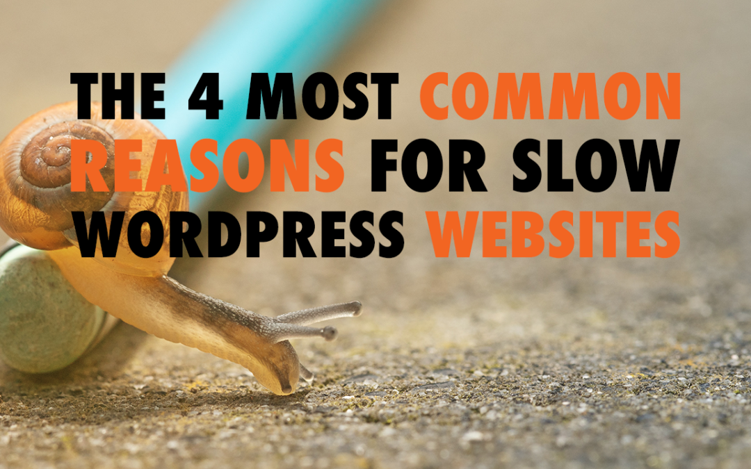 The 4 Most Common Reasons for Slow WordPress Websites | EP 595